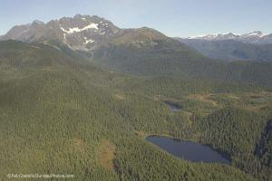 Slate Lake in the Tongass National Forest. Photo: Sierra Club.