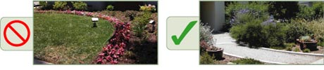 Back by popular demand, Tree of Life Nursery's Replace Your Lawn Three Part workshops.