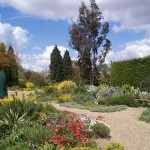 Beth Chatto's Gravel Garden. Click on image to go to Chatto's website.