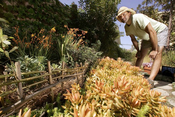 James Duell in his Culver City garden. Photo: Mel Melcon/LA Times. All rights reserved.