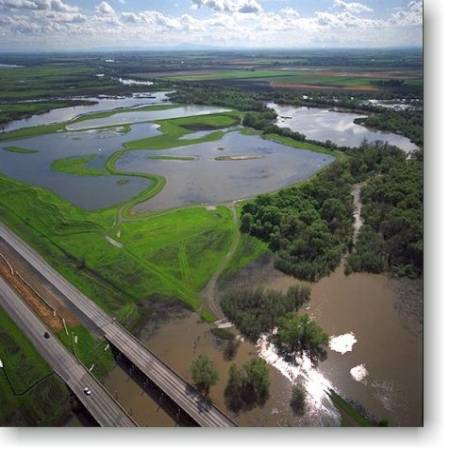 Sacramento Delta. Photo: US Fish & Wildlife Service