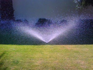 Use of lawn will be reduced indirectly in AB 1881 by a reduction in allowed evapotranspiration rates.