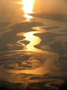 Indus River Delta. Photo: Michael Foley, Flickr.