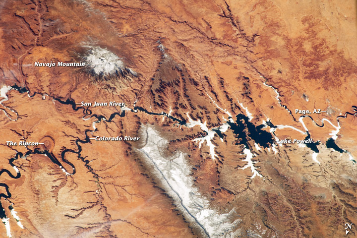 Colorado River and Lake Powell, March 12, 2013. Source: NASA's Earth Observatory