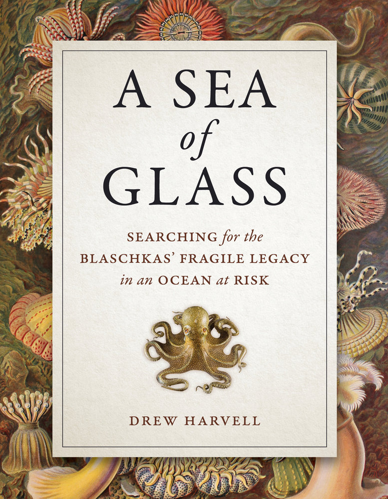 "Click on the octopus to learn about Drew Harvell's book, ""A Sea of Glass,"" which will be published in March by UC Press."
