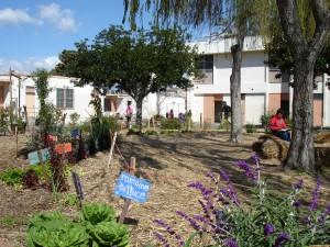 24th Street School Garden