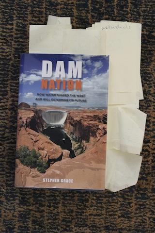 'Dam Nation' cover