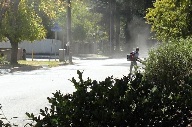 Leaf blower dust